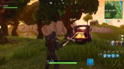 Wailing Woods Fortnite Chest in I3